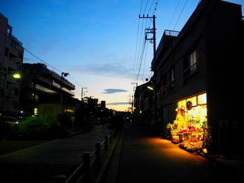 touyokoyugure.jpg